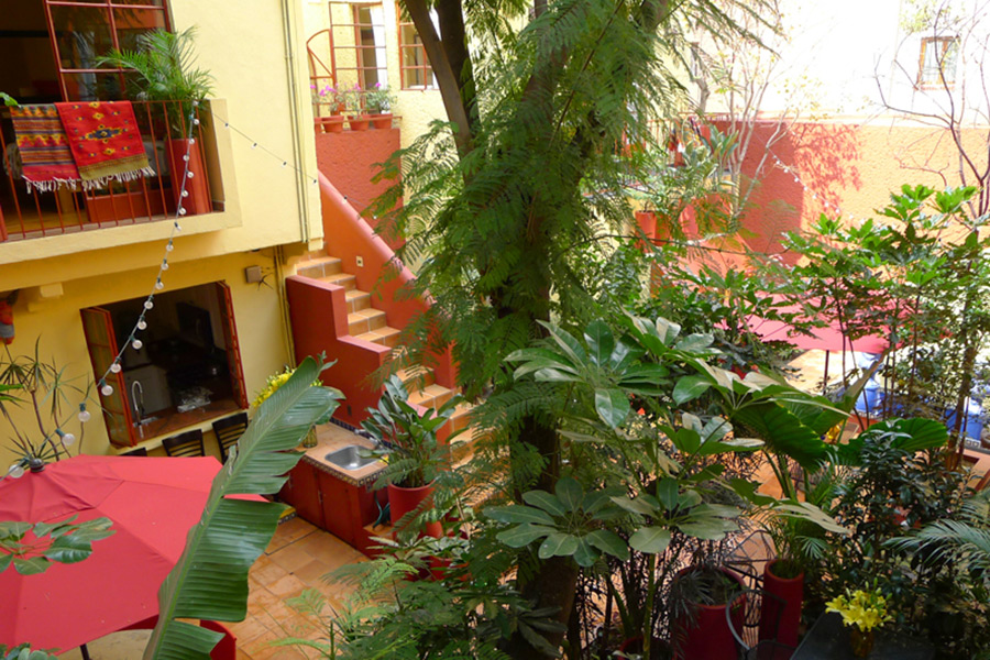 Red Tree House B&B, Mexico City