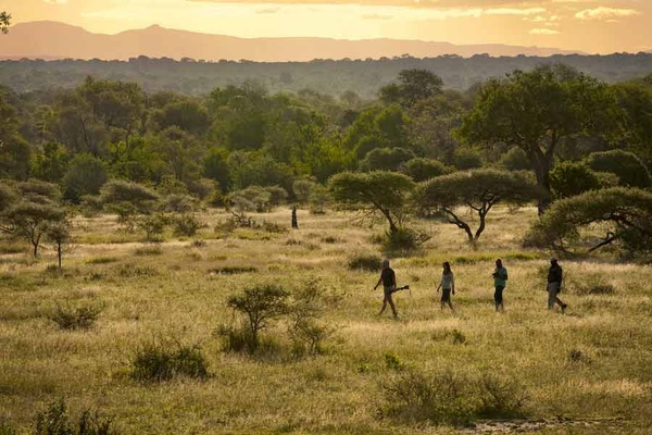 Africa's Best Safari Lodges