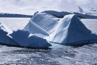 Eye Candy: Behold the Icebergs