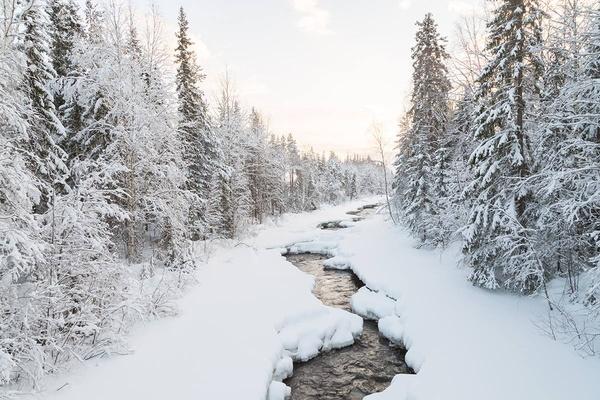 Loggers Lodge, Swedish Lapland