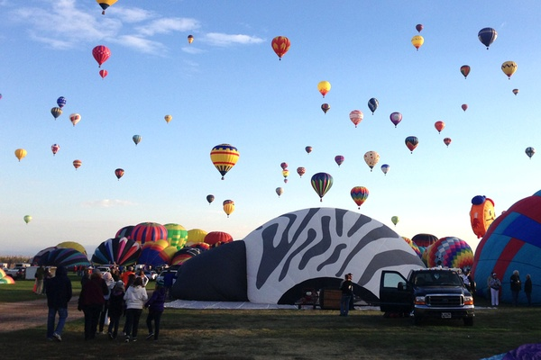 Look Up! Flying High at Balloon Fiesta