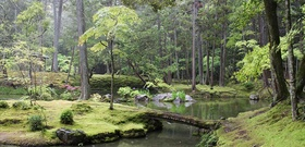 Searching for Paradise at Kyoto's Moss Temple