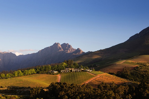 Let It Go to Your Head: A First-Timer's Guide to the Cape Wine Country