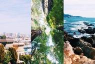 On the Road Trip: San Francisco to Monterey