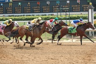 Kentucky Derby: Lexington Essentials