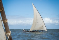 A Joyous Celebration on Kenya's Lamu Island