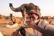 Camel's Milk Chai in Pushkar