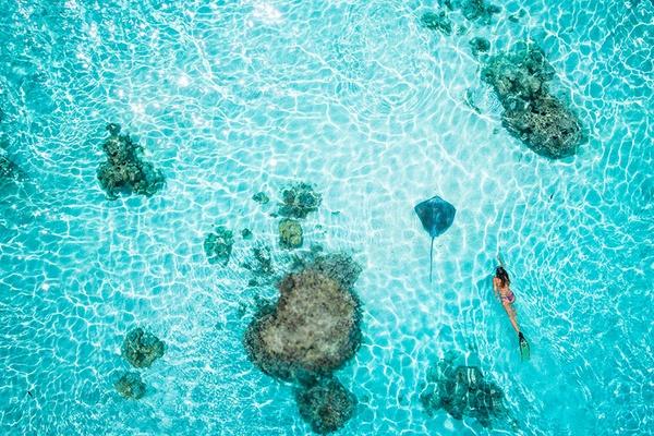 Tahiti by Salt Wings