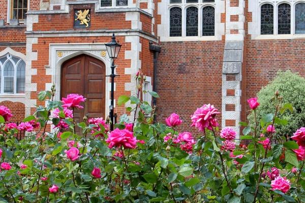 Gardens at Gray's Inn