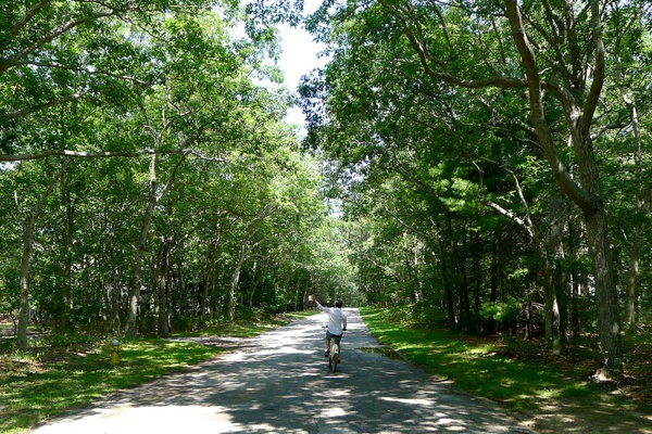 In Praise of Quogue, the Most Un-Hampton of Them All