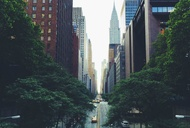 The Best Books About New York, Hands Down