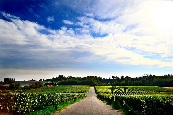 Who You Calling Champagne? Tasting Notes on Italy's Best Bubbly