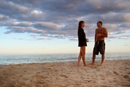 A Field Guide to the Hamptons