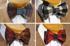 Kingston 21 Bow Tie