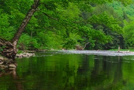 The Simple Pleasures of New York Fly Fishing