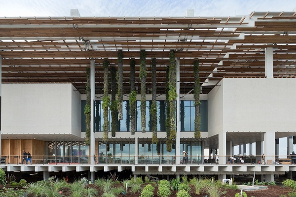 Perez Art Museum, Miami.