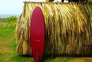 Hidden Surf Retreat: Nicaragua