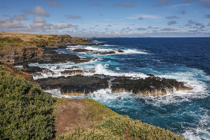 The Nobbies on Phillip Island, Australia