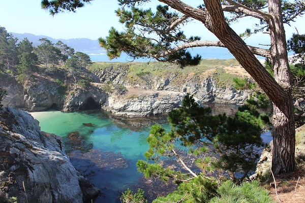 Point Lobos Natural Reserve - Big Sur, California