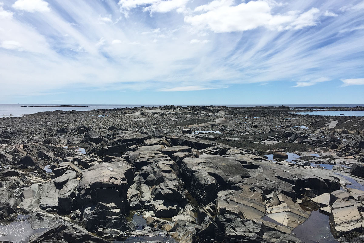 Cove walking in Kennebunk, Maine