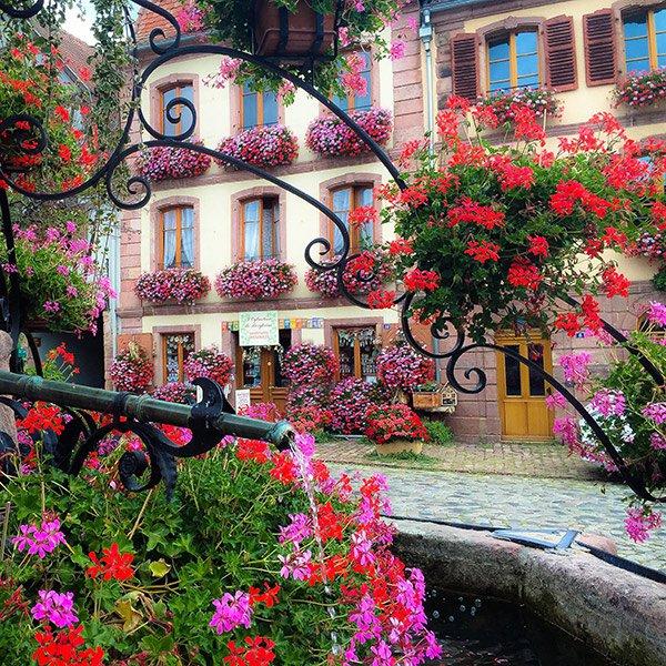Bergheim, France / @sennarelax