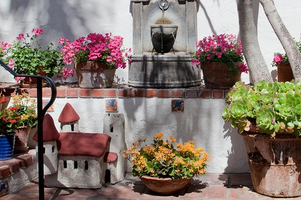 Casa Laguna Hotel & Spa plants