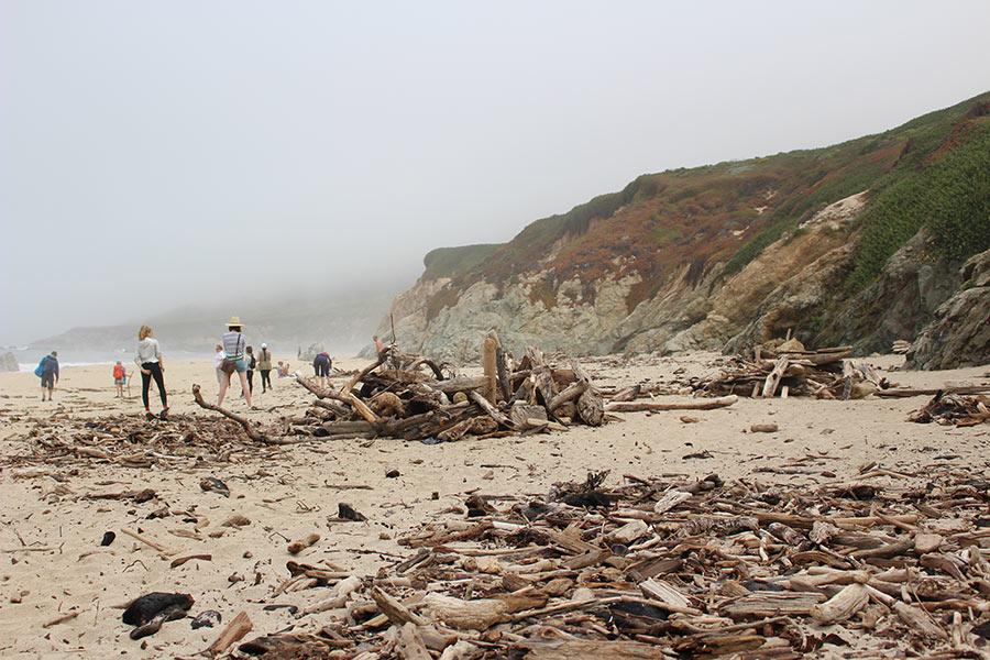 Garrapata State Park and Beach - Big Sur, California