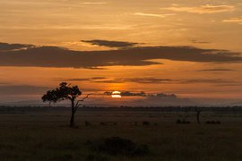 Angama Mara sunrise