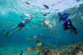 Scuba diving in Antigua.