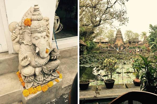 Lotus Cafe / Spirituality