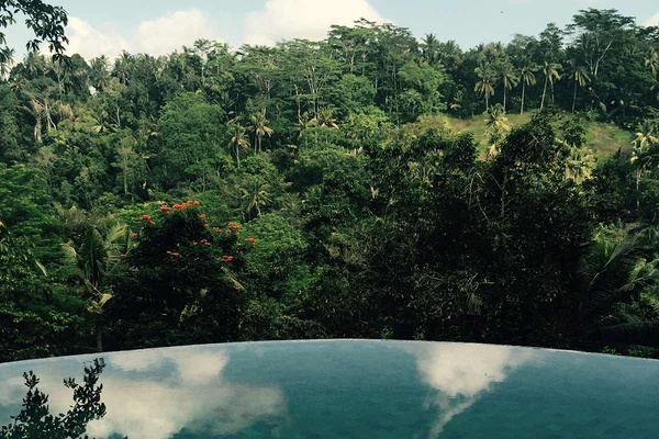 Villa Melati Pool