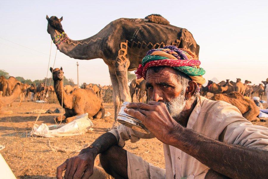 Drink Camel's Milk Chai