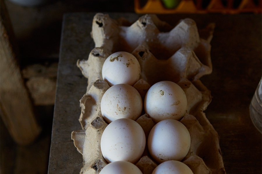 Eggs on a Shelf