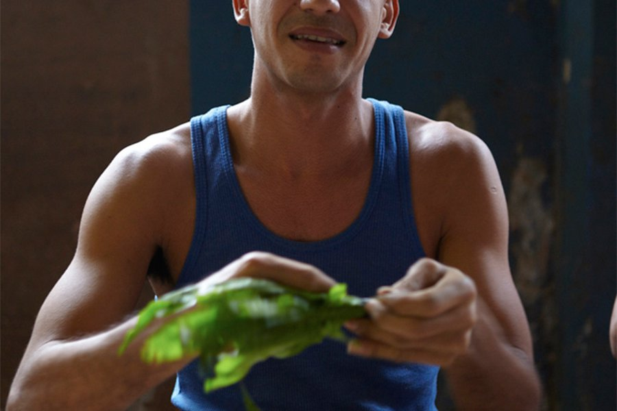 Vendor Selling Cilantro in the Quatro Caminos Market, Havana