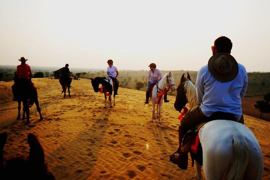 Be a Hero on Horseback