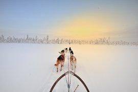 Sledding into sunset Kangos Sweden