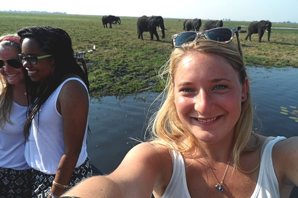 Elephants, Chobe River.