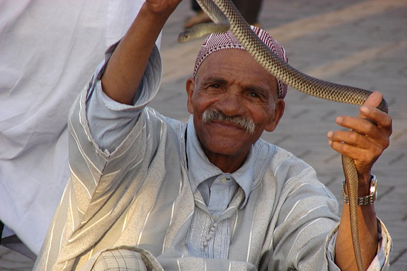 Snake whisperer on the place Djemaa el Fna. Photo by Christine Pierre