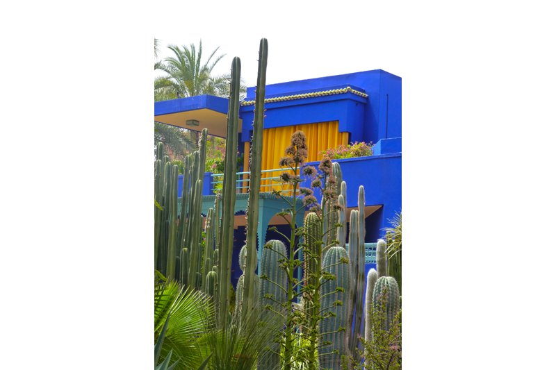 Yves Saint Laurent's house behind his cactus garden. You can visit Majorelle Garden. It was designed by a French artist called Jacques Majorelle in the late 1920's/early 1930's.