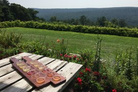 Cider tasting and a panoramic view of rolling hills in Gettysburg Pennsylvania