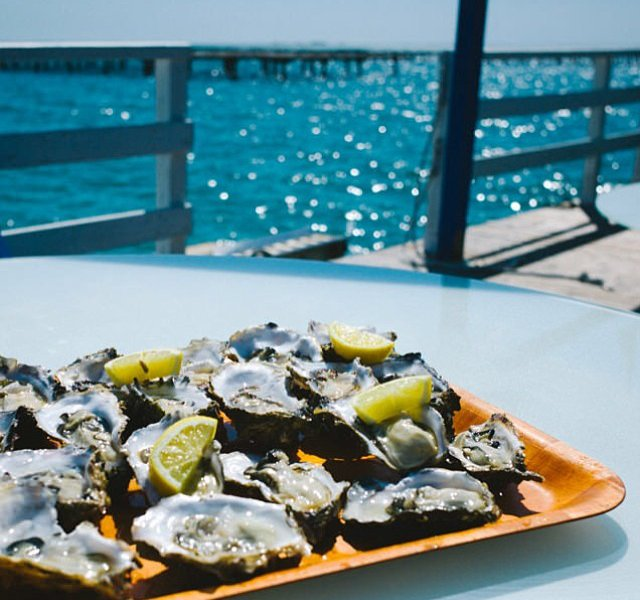 Oysters by the Ocean