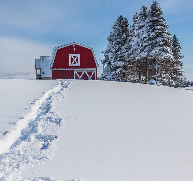 Snow Storm Effect