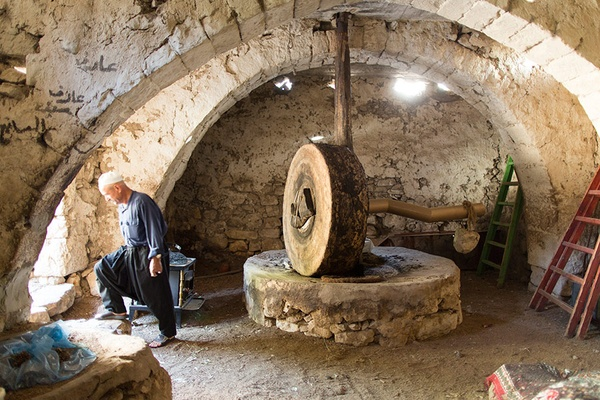 Olive Oil Maker, Upper Galilee, Israel