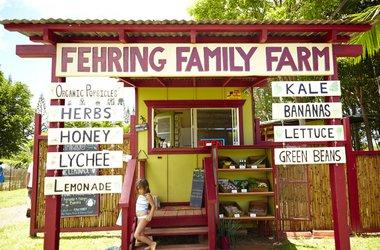 Fehring Family Farm