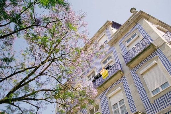Azulejos, Lisbon