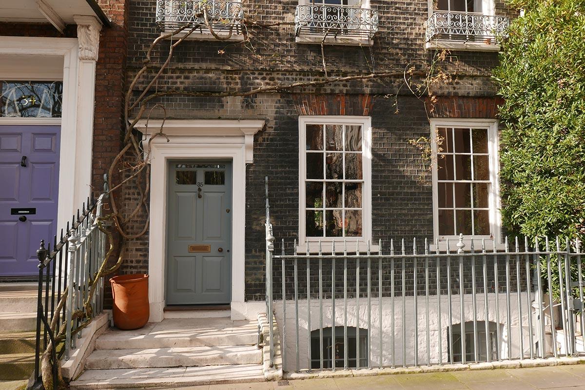 Wisteria Vine, Kensington, London