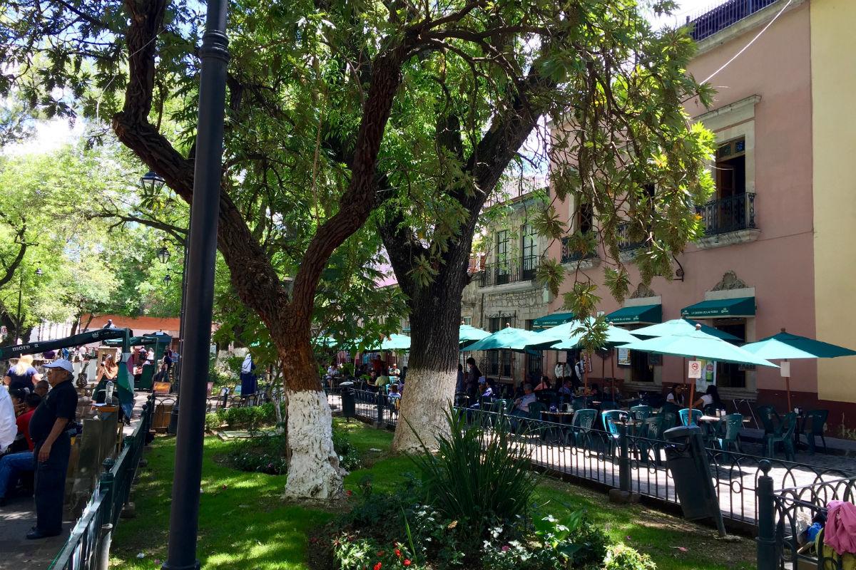Jardin de Las Rosas in Morelia.