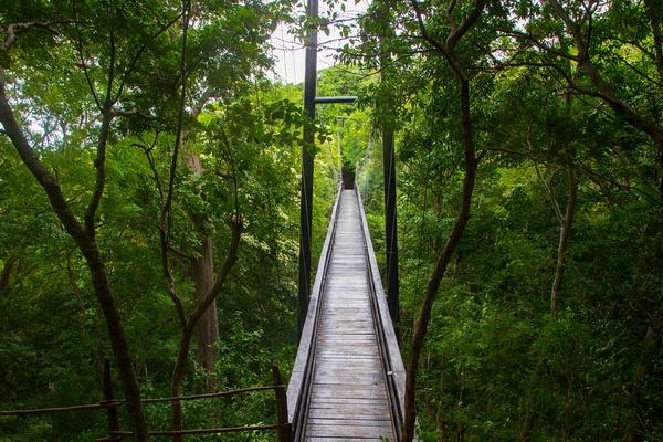 Morgan's Rock Suspension Bridge