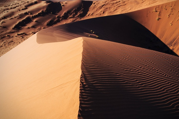 Namib Desert hues