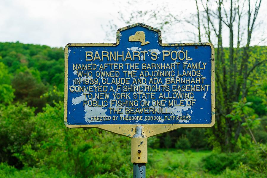 Barnhart Pool, Beaverkill, New York